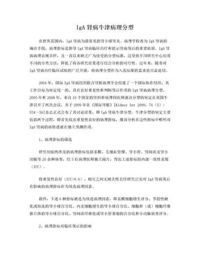 IgA肾病牛津病理分型.doc