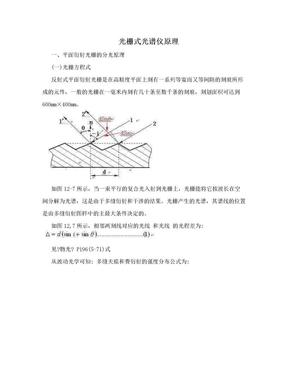 光栅式光谱仪原理.doc