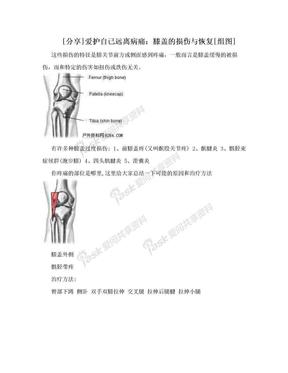 [分享]爱护自己远离病痛:膝盖的损伤与恢复[组图].doc