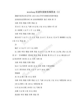 wendang社团年度财务预算表 (1).doc