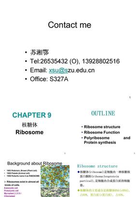 第9章 核糖体和核酶.ppt
