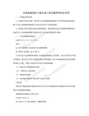 中纺机集团对下属企业工资总额管理办法介绍.doc