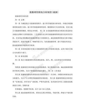 能源利用状况分析制度(最新).doc