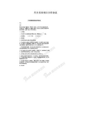 汽车美容项目合作协议.doc