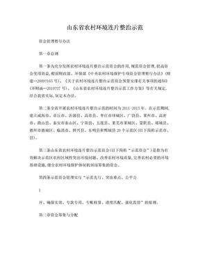 山东省农村环境连片整治示范资金管理办法.doc