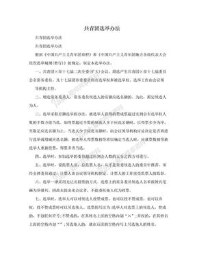 共青团选举办法.doc
