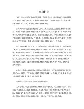 校园义务劳动活动总结报告.doc