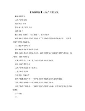 【精编原版】大客户开发方案.doc