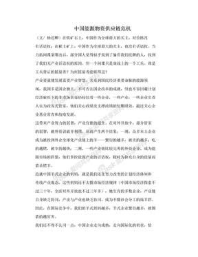 中国能源物资供应链危机.doc