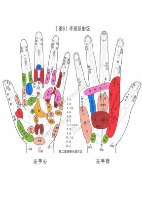 手掌与足部反射区图.doc