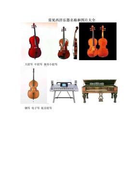 常见西洋乐器名称和图片大全.doc