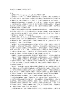 04变质岩石学.doc