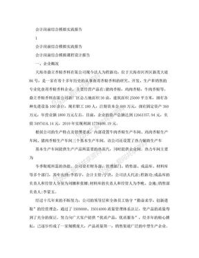 会计综合模拟实验报告.doc