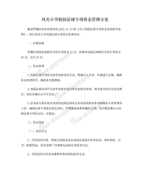 凤光小学校园足球专项资金管理方案.doc