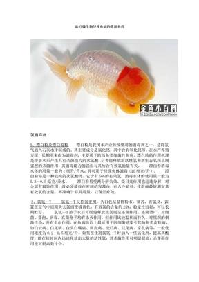 治疗微生物导致鱼病的常用鱼药.doc
