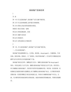 商业地产招商培训.doc