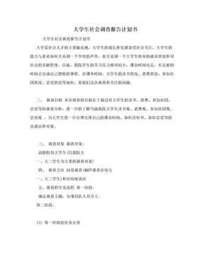 大学生社会调查报告计划书.doc