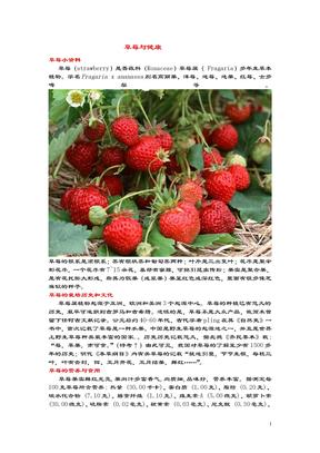 草莓.doc