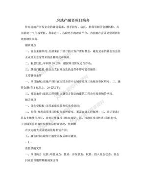 房地产融资项目简介.doc