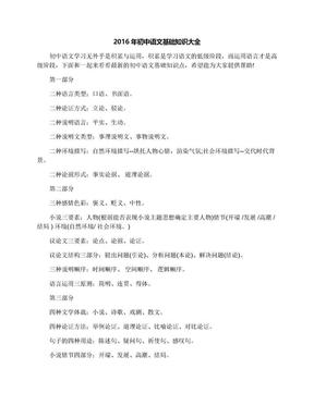 2016年初中语文基础知识大全.docx