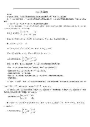 _二元二次方程组.doc