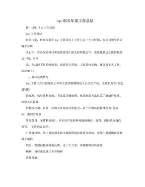 iqc组长年度工作总结.doc