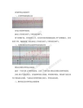 家兔呼吸运动的调节:实验报告及结果分析.doc