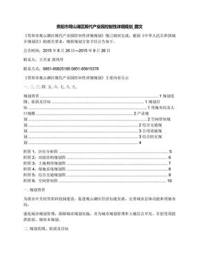贵阳市观山湖区现代产业园控制性详细规划_图文.docx