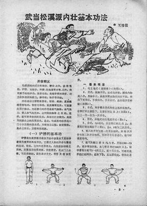 武当松溪派内壮基本功法(王维慎).pdf