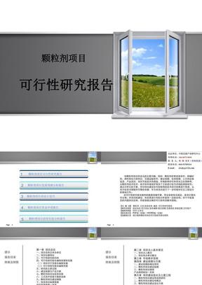 颗粒剂项目可行性研究报告.ppt