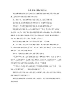 申报中国名牌产品综述.doc