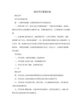 综艺节目策划方案.doc