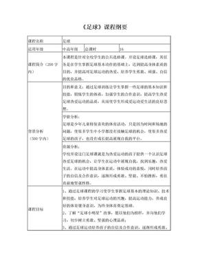 足球课程纲要.doc
