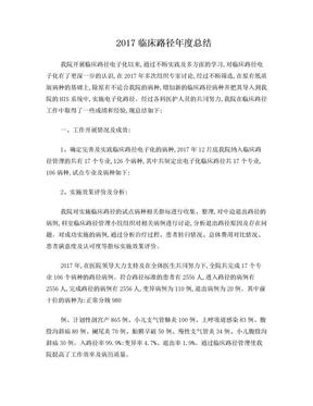 2017临床路径总结.doc