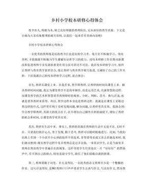 乡村小学校本研修心得体会.doc