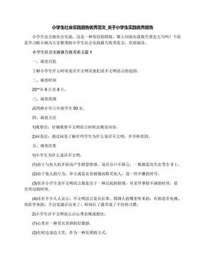 小学生社会实践报告优秀范文_关于小学生实践优秀报告.docx
