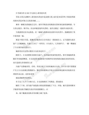 中考满分作文800字记叙文:最美的风景.doc
