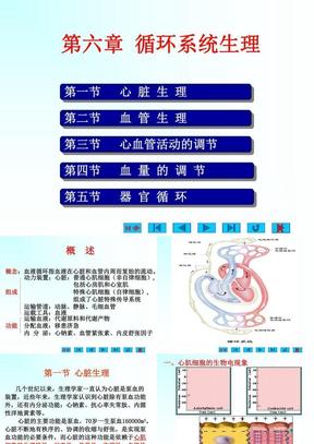 第6章  循环系统生理.ppt