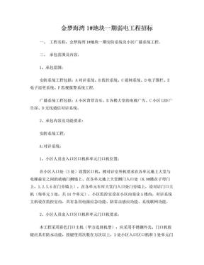 弱电工程招标文件.doc