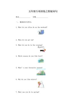 五年级英语特殊疑问句练习.doc