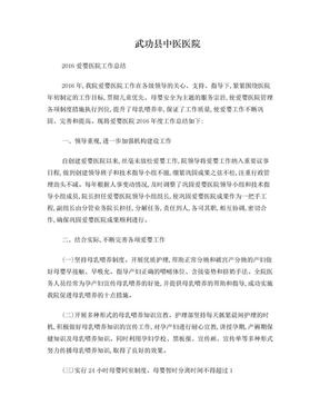 2016爱婴医院总结.doc