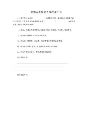 集体诉讼代表人授权委托书.doc