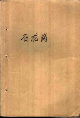 石龙岗(浙江人民出版社 1978).pdf