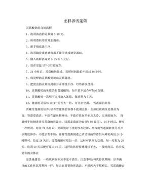 怎样养雪莲菌.doc