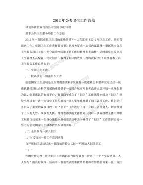 2012年公共卫生工作总结.doc