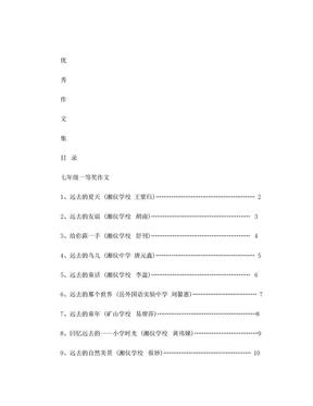 初中生优秀作文集.doc