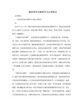 政府督查室跟班学习心得体会.doc