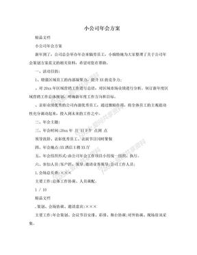 小公司年会方案.doc