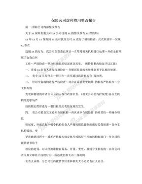 保险公司虚列费用整改报告.doc