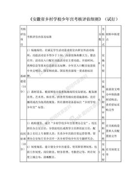 《安徽省乡村学校少年宫考核评估细则》(试行).doc